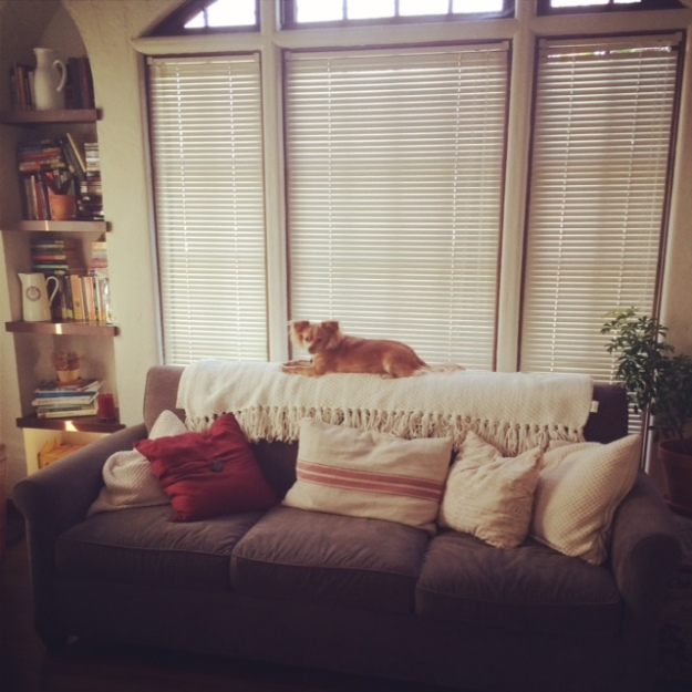 Couch in window