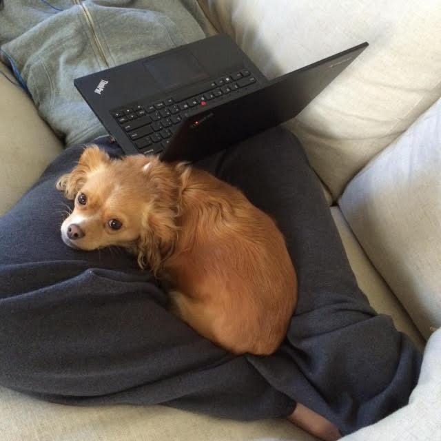 penny coworker
